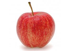 Pommes Initiale Gala