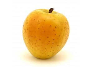 Pommes Délice d'or