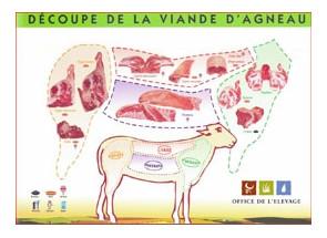 PROMO 25% - Colis d'agneau...