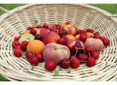 Plateau de fruits frais d'été -...