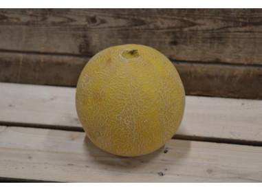 Melon Canari (+/- 1kg)