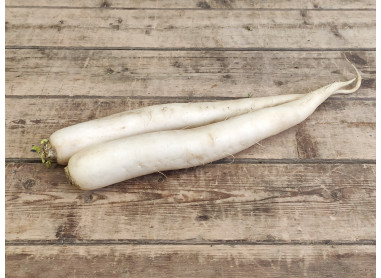 Radis blanc long Daikon 500g
