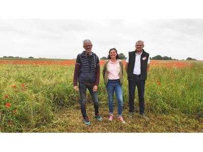 La ferme Vivien d'Anjou, exploitation de légumineuses (44)